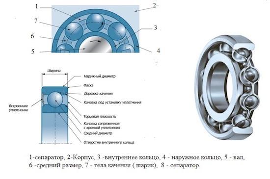 Конструкция однорядного подшипника качения с шариковыми телами качения.